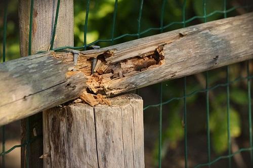 kotli na drva